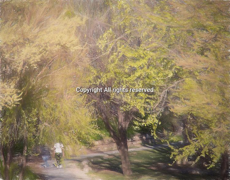 A man and a wonman walk along a path in a nature park.