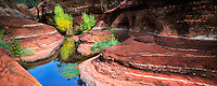 Small pool in red rock of unnamed creek. Red Rock Secret Mountain Wilderness, Arizona
