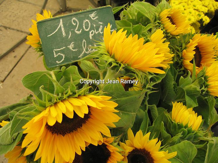 Sunflowers, Provence