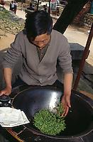 China, Hangzhou, Trocknen von Teeblättern im Drachenbrunnendorf