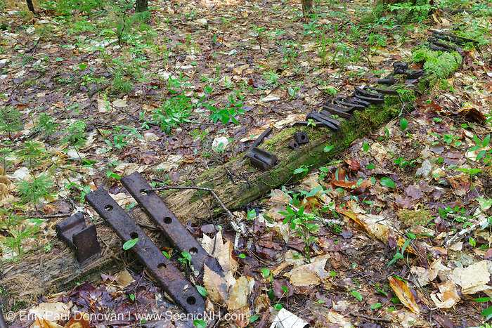 Old railroad spikes and various other artifacts placed on display along the Hancock Branch of the East Branch & Lincoln Railroad (1893-1948) in New Hampshire. The removal of historic artifacts from federal lands without a permit is a violation of federal law. And artifacts should be left in place not put on display like this.