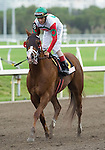 30 January 2010: This Ones for Phil and jockey John Velaquez after winning the Sunshine Millions Sprint Stakes at Gulfstream Park in Hallandale Beach, FL.
