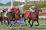 HALLANDALE BEACH, FL - APRIL 01:  #1 Conquest Hardcandy wth jockey Edgard Zayas on board, wins the Sanibel Island Stakes at Gulfstream Park on April 01, 2017 in Hallandale Beach, Florida. (Photo by Liz Lamont/Eclipse Sportswire/Getty Images)