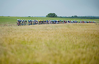 peloton stretched and broken into echelons<br /> <br /> Tour de France 2013<br /> stage 13: Tours to Saint-Amand-Montrond, 173km