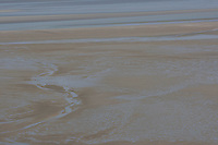 Watt, Sandwatt, Wattfläche, Wattflächen, Gezeiten, Wattenmeer, Niedrigwasser, Tide, Tiden, Tidenhub, Strand, Meer, Watt, Küste, Meeresküste, Atlantik, Atlantischer Ozean, Frankreich, Bretagne. mud flat, mudflat, sand tidal flat, low tide, tidal sand flat, tide sand flat, tide, tides, tidal range, beach, sea, coast, seaside, Atlantic, Atlantic Ocean, France, Brittany