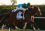 08 October. Gio Ponti and Ramon Dominguez win the Shadwell Turf Mile.