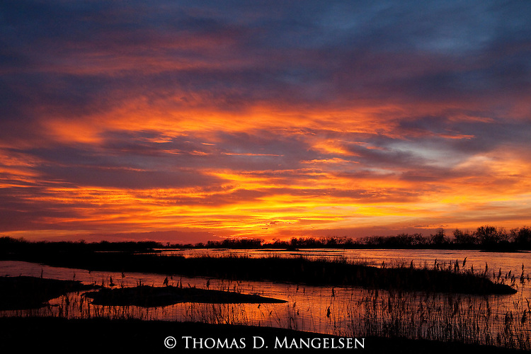 The setting sun paints the sky with a blaze of color, and the quiet waters of the Platte River brushed in gold echo the splendor of the twilight display on a Nebraska evening.