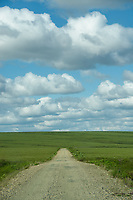 The Kougarok Road, north of Nome, Alaska. Photo by James R. Evans