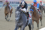 The Lumber Guy (no. 1), ridden by Michael Luzzi and trained by Michael Hushion, wins the 142nd running of the grade 2 Jerome Stakes for three year olds on April 21, 2012 at Aqueduct Race Track in Ozone Park, New York.  (Bob Mayberger/Eclipse Sportswire)