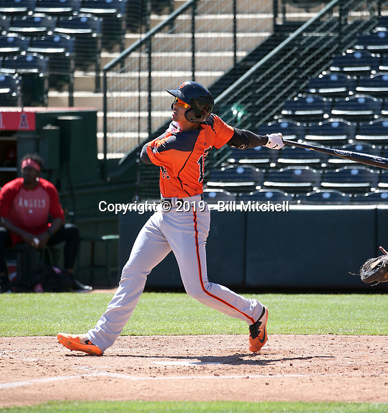 Abdiel Layer - San Francisco Giants 2019 extended spring training (Bill Mitchell)