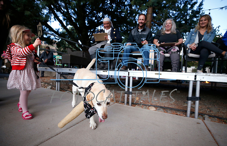 Jules Lawson, 4, and her dog Butters walk past the judges at the Scallywaggers Pirate Pup Parade at the Brewery Arts Center, in Carson City, Nev., on Wednesday, Sept. 18, 2019.<br />