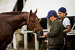 HALLANDALE BEACH, FL - JANUARY 26: Trainer Pete Eurton gives a treat to Giant Expectations before the Pegasus World Cup Invitational at Gulfstream Park Race Track on January 26, 2018 in Hallandale Beach, Florida. (Photo by Alex Evers/Eclipse Sportswire/Getty Images)