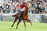 June 04, 2017, CHANTILLY, FRANCE - Waldgeist with Pierre-Charles Boudot up at parade canter for the Prix du Jockey Club (Gr. II) at Chantilly Race Course  [Copyright (c) Sandra Scherning/Eclipse Sportswire)]