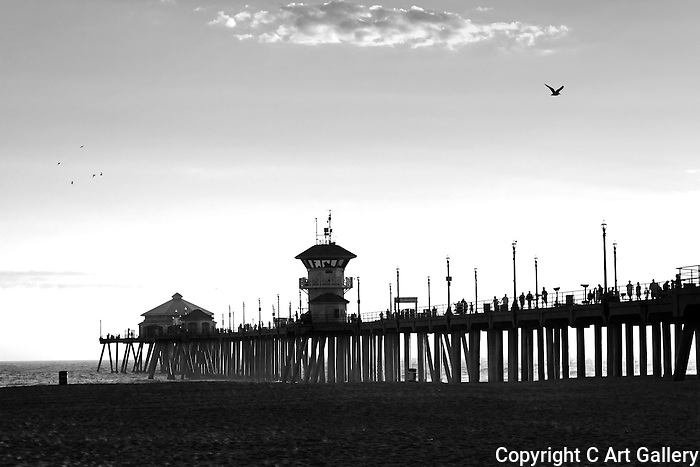 Pier & Gulls, Huntington Beach, CA