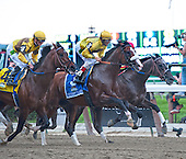 11th Belmont Stakes - Union Rags