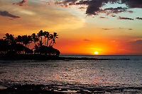 Colorful sunset with sun globe above the Pacific Ocean, with palm tree forest silhouettes and lava rocks in Pauoa Bay, on the Big Island of Hawaii