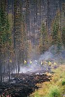 Firefighters, Alaska Highway, near Tok Junction, Alaska