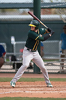 Oakland Athletics catcher Jonah Heim (55) at bat during a Minor League Spring Training game against the Chicago Cubs at Sloan Park on March 13, 2018 in Mesa, Arizona. (Zachary Lucy/Four Seam Images)