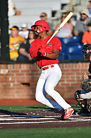 Johnson City Cardinals Todd Lott (29) swings at a pitch during game two of the Appalachian League, West Division Playoffs against the Bristol Pirates at TVA Credit Union Ballpark on August 31, 2019 in Johnson City, Tennessee. The Cardinals defeated the Pirates 7-4 to even the series at 1-1. (Tony Farlow/Four Seam Images)