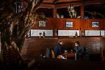 Balkan Lynx (Lynx lynx balcanicus) biologists, Ole Anders and Gordan Serafimov, speaking below sub-adult lynx and Golden Eagle (Aquila chrysaetos) killed by hunters displayed in ski lodge, Mavrovo National Park, North Macedonia