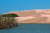 Dunas no delta do Parnaiba. Piaui. 2013. Foto de Candido Neto.
