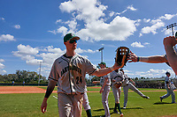 Dartmouth Big Green Kade Kretzschmar (24) high fives teammates during a game against the Omaha Mavericks on February 23, 2020 at North Charlotte Regional Park in Port Charlotte, Florida.  Dartmouth defeated Omaha 8-1.  (Mike Janes/Four Seam Images)