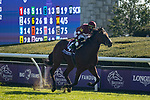 November 6, 2020: Golden Pal, ridden by Irad Ortiz, Jr., wins the Juvenile Turf Sprint on Breeders' Cup Championship Friday at Keeneland on November 6, 2020: in Lexington, Kentucky. Leah Vasquez/Eclipse Sportswire/Breeders Cup/CSM