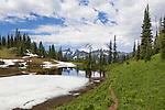 Mount Rainier seen over Upper Tipsoo Lake at snowmelt in August.  Tipsoo Lakes straddle Highway 410 at Chinook Pass, Mount Rainier National Park.  Native plants provide stunning color in fall.  Naches Loop Trail passes Upper Tipsoo Lake.
