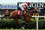 LOUISVILLE, KY - MAY 28: Al's Gal (Florent Geroux) wins the 4th running of the Keertana Overnight Stakes, one and a half miles on the turf for fillies and mares three years old and up. Owner Kenneth L. and Sarah Ramsey, trainer Michael J. Maker. (Photo by Mary M. Meek/Eclipse Sportswire/Getty Images)