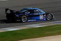 #90 Spirit of Daytona Chevrolet/Coyote of Antonio Garcia & Paul Edwards