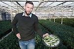 """Foto: VidiPhoto<br /> <br /> ZUNDERT – In de rij van Nederlandse whiskey-, wijn- en bierkenners, meldt zich nadrukkelijk nu ook de theekenner, dankzij Tea by Me BV in Zundert aan de Belgische grens. De passie voor het product ontwikkelde eigenaar Johan Jansen in China, waar hij een half jaar verbleef. Het idee om theeplanten voor de Nederlandse tuinen te kweken, groeide uit tot een complete theeplantage van 2 ha. glas, 1 ha. tunnels en 4 ha. buitenteelt op dit moment. De eerste theeplanten vonden hun weg naar de Nederlandse en vooral ook Russische en Aziatische consument via Special Plant Zundert. Sinds vier jaar is de theepoot een zelfstandig en groeiend bedrijf, vertelt Jansen. """"Jaarrond wordt worden 130 soorten theeplanten gekweekt en geschikt gemaakt voor de consument wereldwijd. De helft wordt als plant verkocht. Van het andere deel wordt het blad geplukt voor 600 theemelanges. Alles doen we in eigen huis. Van kweken -inclusief veredelen en vermeerderen- plukken, drogen tot en met inpakken."""""""