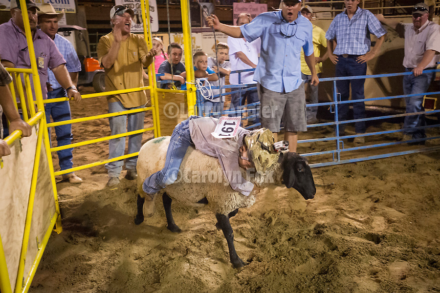 75th Amador County Fair, Plymouth, Calif.<br /> <br /> Day 3--Mutton Bustin' finals during the Saturday night rodeo