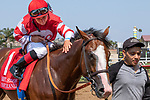 DEL MAR, CA  AUGUST 11: #1 Instagrand, gets a congratulatory pat from jockey Drayden Van Dyke, after winning the Best Pal Stakes (Grade ll) on August 11, 2018, at Del Mar Thoroughbred Club in Del Mar, CA. (Photo by Casey Phillips/Eclipse Sportswire/Getty Images