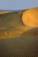 Strand und Dünen von Playa del Ingles, Gran Canaria, Kanarische Inseln, Spanien