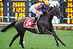 Ramon Dominguez aboard Stacelita Wins  22nd running of The Beverly D. Stakes on Arlington Million Day at  Arlington Park in Arlington Heights, IL  on 8/13/11. Trained by Chad Brown, Apart of the Breeders Cup Win and You're In (Ryan Lasek / Eclipse Sportwire)