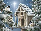 Dona Gelsinger, CHRISTMAS SYMBOLS, WEIHNACHTEN SYMBOLE, NAVIDAD SÍMBOLOS,birdhouse, paintings+++++,USGE2008,#xx#