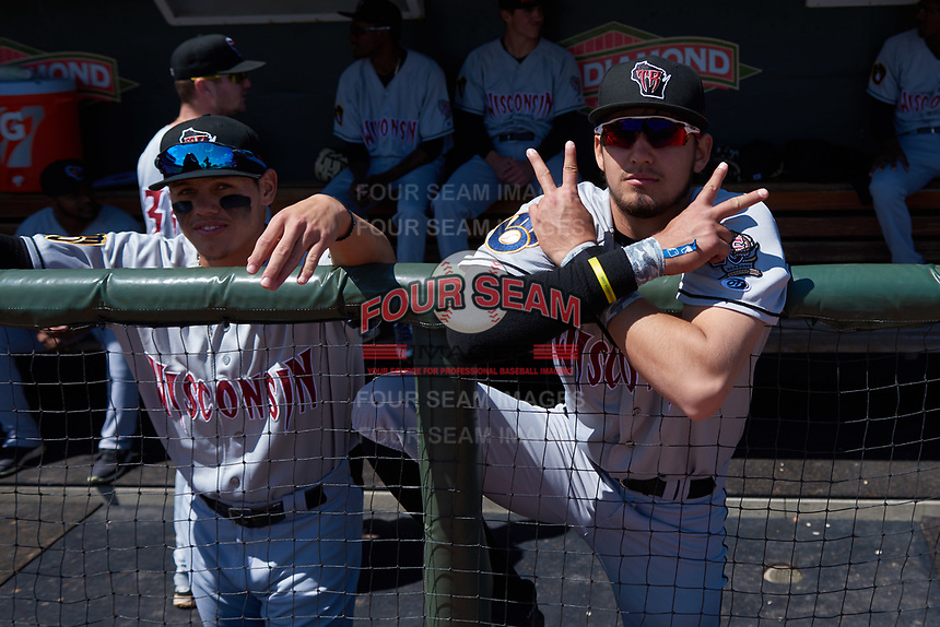 Wisconsin Timber Rattlers Antonio Pinero (3) poses for a photo before a Midwest League game against the Great Lakes Loons at Dow Diamond on May 4, 2019 in Midland, Michigan. Great Lakes defeated Wisconsin 5-1. (Zachary Lucy/Four Seam Images)