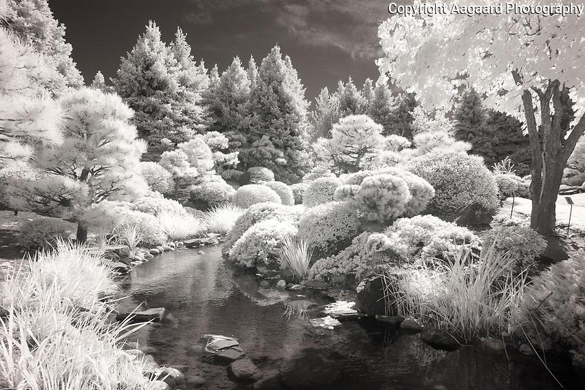 Denver Botanical Garden infrared