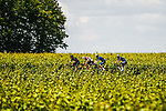 The early breakaway with Søren Kragh Andersen (DEN) Team DSM, Tom Skujins (LAT) Trek-Segafredo, Kasper Asgreen (DEN) Deceuninck-QuickStep and Jonas Rickaert (BEL) Alpecin-Fenix during Stage 6 of the 2021 Tour de France, running 160.6km from Tours to Chateauroux, France. 1st July 2021.  <br /> Picture: A.S.O./Charly Lopez | Cyclefile<br /> <br /> All photos usage must carry mandatory copyright credit (© Cyclefile | A.S.O./Charly Lopez)
