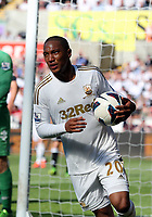 Pictured: Jonathan de Guzman.<br /> Sunday 19 May 2013<br /> Re: Barclay's Premier League, Swansea City FC v Fulham at the Liberty Stadium, south Wales.