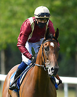 One Small Step ridden by Jim Crowley goes down to the start  of The AJN Steelstock Steel Processors British EBF Fillies' Handicap   during Horse Racing at Salisbury Racecourse on 9th August 2020