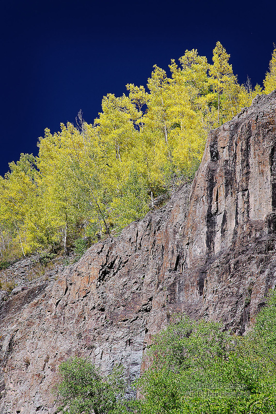 Canyon Wall near Henson Creek, Colorado