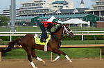 April 18, 2015 Kentucky Derby and Oaks contenders at Churchill Downs.  Mr. Z galloped during the Derby and Oaks workout period. Owner Zayat Stables, trainer D. Wayne Lukas.  By Malibu Moon x Stormy Bear (Storm Cat) ©Mary M. Meek/ESW/CSM