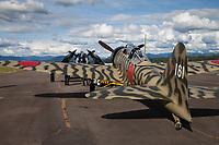 Mitsubishi A6M3-22 Reisen, Japanese Zero Fighter Aircraft, Arlington Fly-In 2016, WA, USA.