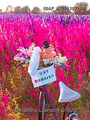 Assaf, CUTE ANIMALS, LUSTIGE TIERE, ANIMALITOS DIVERTIDOS, teddies, paintings,+Basket, Bicycle, Bicycles, Bike, Bikes, Childhood, Color, Colour Image, Cute, Delphinium, Field, Floral, Flower, Flowers, Jus+t Married Sign, Love, Multicolored, Multicoloured, Photography, Romace, Romance, Romantic,Teddy Bear, Teddy Bears, Toy, Toys,+Wedding, Wedding Vale,Basket, Bicycle, Bicycles, Bike, Bikes, Childhood, Color, Colour Image, Cute, Delphinium, Field, Flora+l, Flower, Flowers, Just Married Sign, Love, Multicolored, Multicoloured, Photography, Romace, Romance, Romantic,Teddy Bear,+,GBAFAF20130719D,#ac#, EVERYDAY ,photos,photo