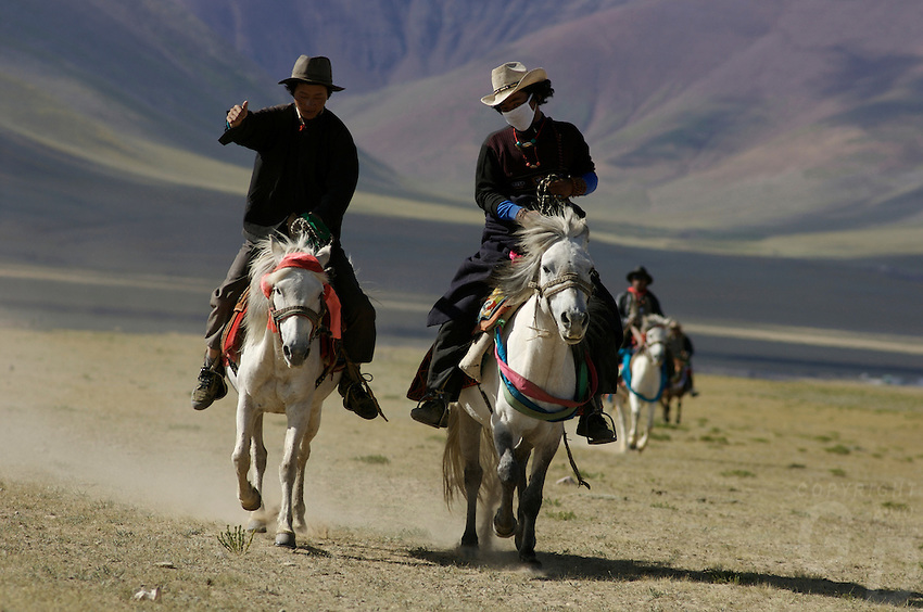 """Early morning Nomads on horseback at the edge of Namtso Lake..Namtso Lake :Namtso, another holy lake in Tibet, is located near Damxung. 4718 meters (15475 feet) above sea level and covering 1900 square kilometers (735 square miles), the lake is the highest saltwater lake in the world and the second largest saltwater lake in China. The snow capped Mt. Nyainqentanglha, considered as the son of Namtso and leader of sacred mountains, soars up to sky beside her. Singing streams converge into the clean sapphire blue lake, which looks like a huge mirror framed and dotted with flowers..The Namtso Lake is held as """"the heavenly lake"""" or """"the holy lake"""" in northern Tibet. .Respected as one of the three holiest lakes in Tibet, the Namtso Lake is the seat of Paramasukha Chakrasamvara for Buddhist pilgrims. In the fifth and sixth month of the Tibetan calendar each year, many Buddhists come to the lake pay homage and pray. Deep tracks are worn into the lakeshore due to this activity. In history, monasteries stood like trees in a forest around the site, attracting large numbers of pilgrims as eminent monks in Buddhist temples extended Buddhist teachings...Buddhists believe Buddhas, Bodhisattvas and Vajras will assemble to hold religious meeting at Namtso in the year of sheep on Tibetan calendar. It is said that walking around the lake at the right moment is 100,000 times more efficacious than that in normal years. That's why thousands of pilgrims from every corner of the world come to pray at the site, with the activity reaching a climax on Tibetan April 15...Walking around the lake takes a week. Ritual walkers love to burn aromatic plants to raise smoke on Auspicious Island [explain this a little] and throw a piece of hada scarf into the lake as a token of fulfilled wishes. If the scarf sinks, it implies ones wish is accepted by the Buddha; if the scarf flows on the water or only half sinks, it means one has failed to be honest and something unhappy may lie ahead...On the four sid"""