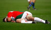 Photo: Richard Lane/Richard Lane Photography. Bath Rugby v Biarritz Olympique. Heineken Cup. 10/10/2010. Biarritz' Imanol Harinordoquy lies injured.