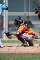 Baltimore Orioles catcher Yermin Mercedes (66) during a minor league Spring Training game against the Tampa Bay Rays on March 29, 2017 at the Buck O'Neil Baseball Complex in Sarasota, Florida.  (Mike Janes/Four Seam Images)