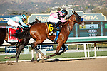 ARCADIA, CA FEBRUARY 6:  #6 Concert Tour, ridden by Joel Rosario, prevails over #1 Freedom Fighter, ridden by Drayden Van Dyke,  to win the San Vicente Stakes (Grade ll) on February 6, 2021, at Santa Anita Park in Arcadia, CA.  (Photo by Casey Phillips/EclipseSportswire/CSM)