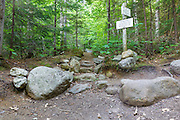 Junction of Valley Way and Brookside Trail in Randolph, New Hampshire during the summer months.